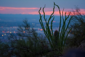 Scottsdale Destination Med Spa City Lights