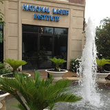 The National Laser Institute Dallas